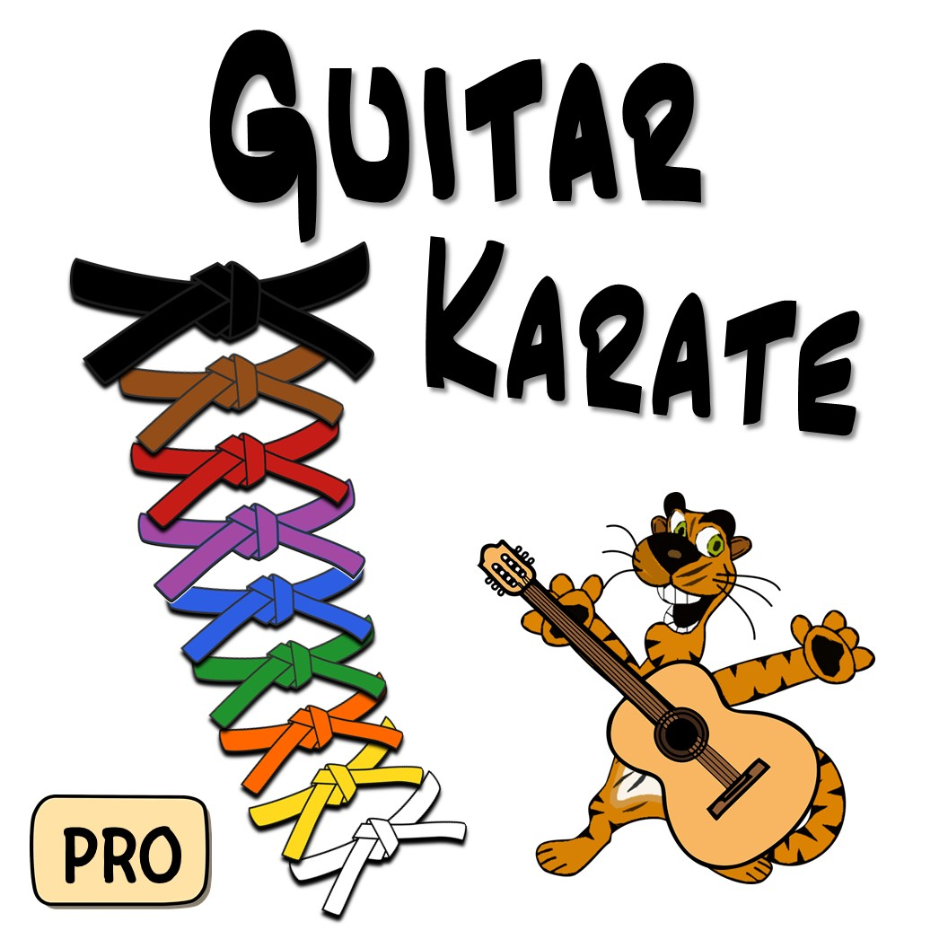 guitar-karate-cover-1